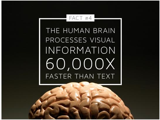 Visual Information Statistic