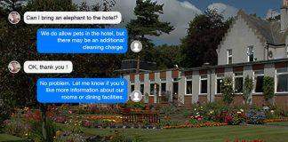 Pitbauchlie AI Hotels