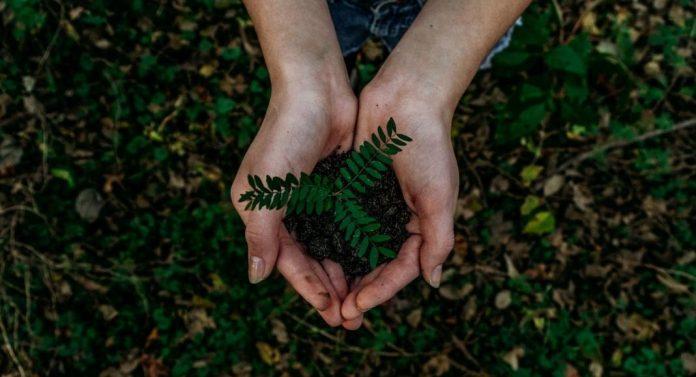 Hotels Environmental
